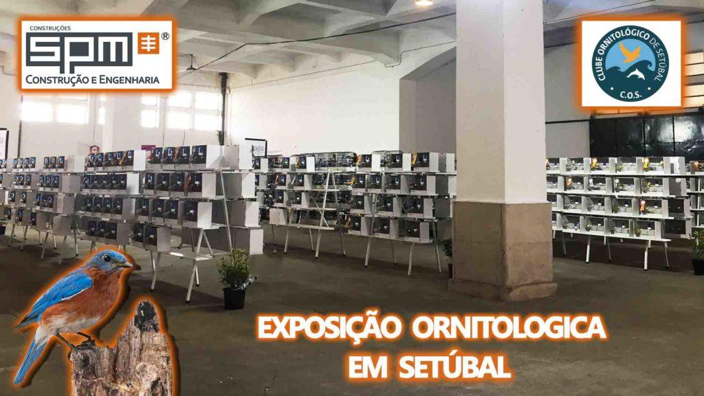 PATROCINADOR SPM NA EXPOSIÇÃO DO CLUBE ORNITOLÓGICO DE SETÚBAL
